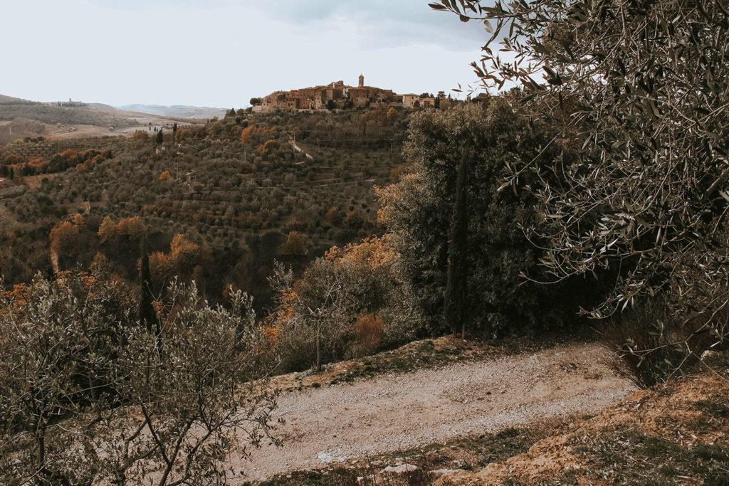veduta di Montalcino Vacanze in Toscana