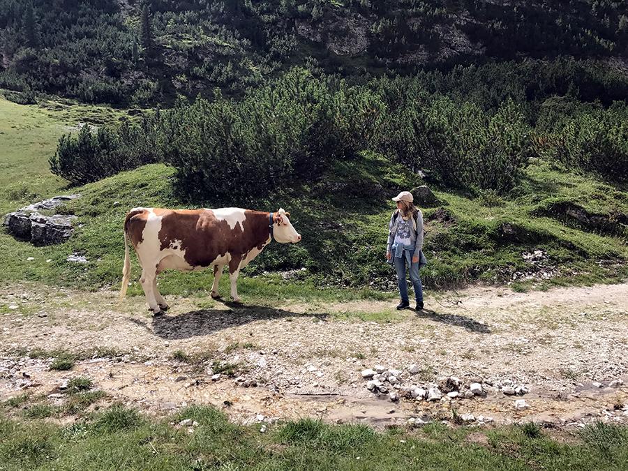 Vacanze in Estate sulle Dolomiti